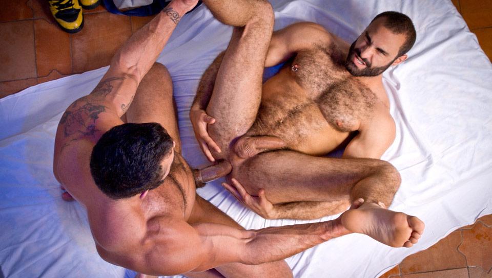 медведи гей мужики порно